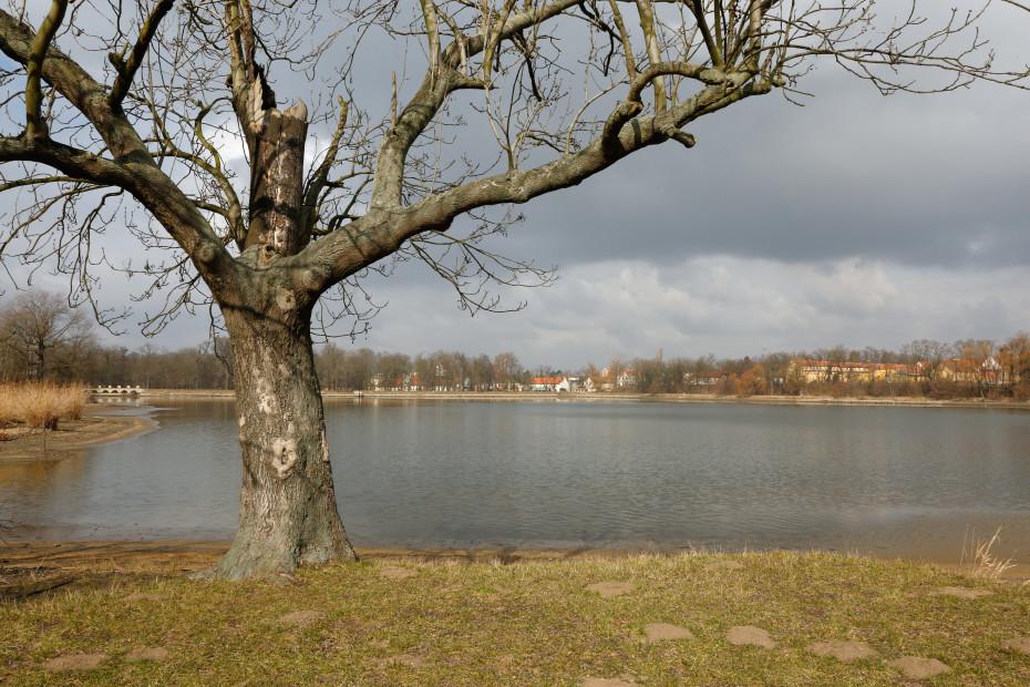 07 - Počernický rybník